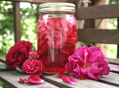 vinaigre de rose Recettes de Cuisine Economique