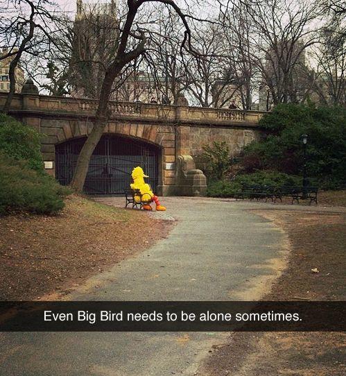 Big Bird needs to be Alone!! hahahaaha!!!! =)