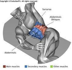 ABDOMINALS - OBLIQUE CRUNCHES ON THE FLOOR