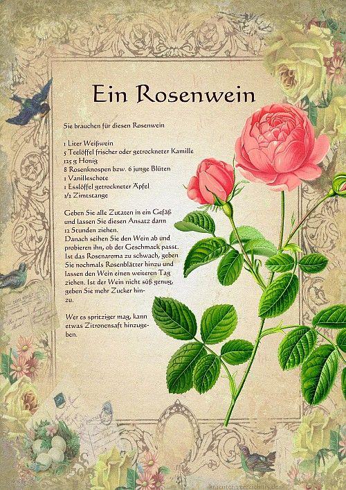 Ein Rosenwein - Im Original Druckformat mit 300DPI