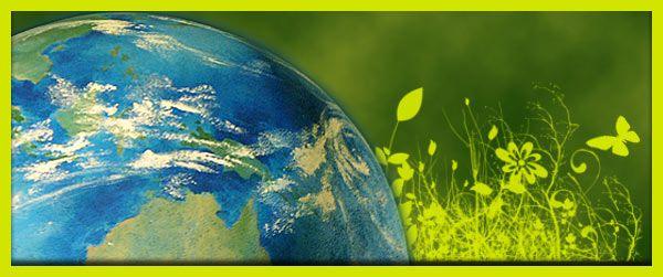 La Ecología | La Ecología y el Ecosistema