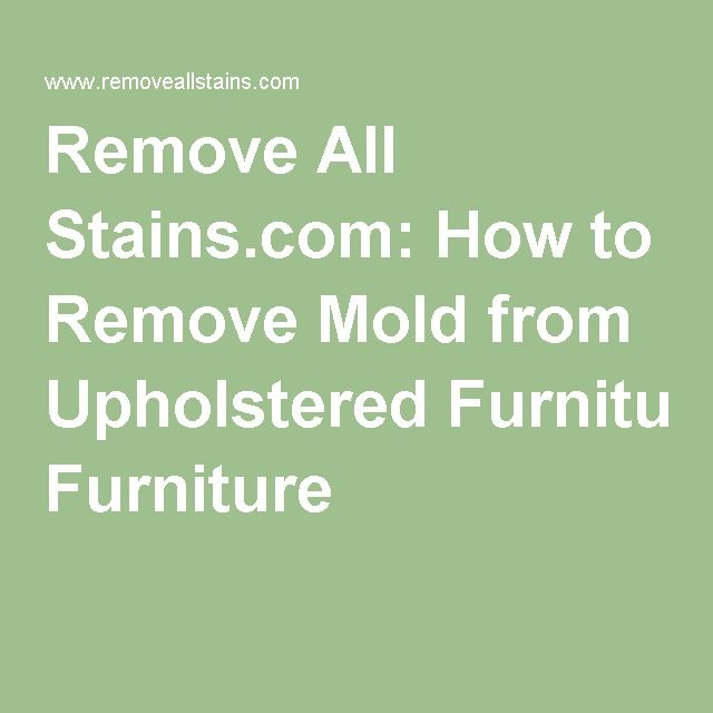 how to clean mold from fabric furniture