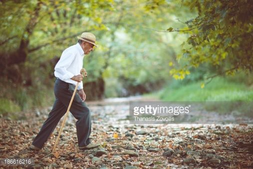 Stock Photo : Senior man walking in a forest