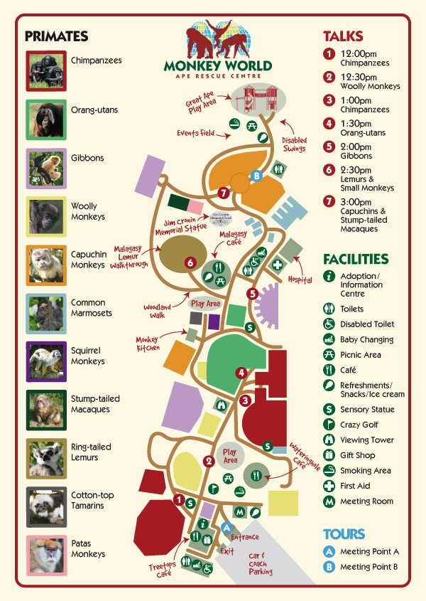 17 best images about things to do in 2015 on pinterest park in monkey world the chimpanzee rescue centre based in wareham dorset uk rescue and rehabilitation of primates world wide sciox Images