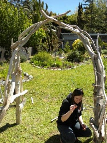 driftwood arch - we had an icky horrible evil neighbor that had one bright idea and used driftwood for an arch, and it was actually really cool