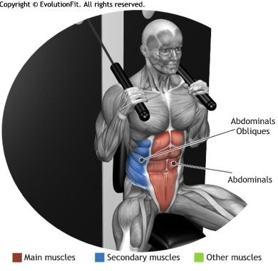 ABDOMINALS - CRUNCH CABLE MACHINE