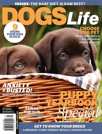 Our latest issue is here! Get your paws on a copy from your local newsagent or subscribe to the magazine here: http://www.universalshop.com.au/index.php?route=product/product&product_id=151 #DogsLifeMag