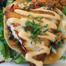 Zocalo Cafe - Fresh Mexican Food