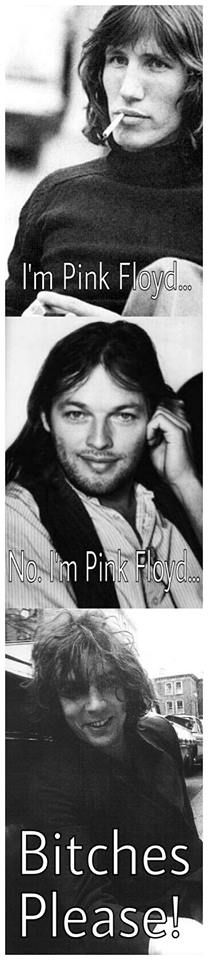 Pink Floyd I prefer Gilmour's flavor but Waters had his moments. Syd's stuff......well....it sounded LIKE Syd. It takes getting used to.