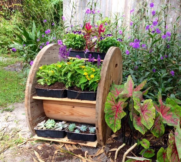 Wire spool planter...will go nicely with my spool tables & pallete furniture