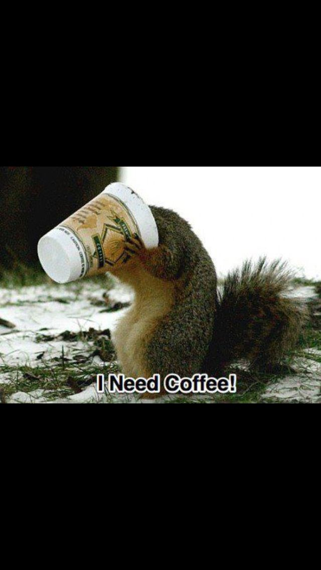 This is me on Monday mornings!