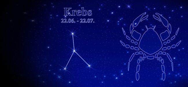Krebs 2016