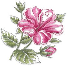 Machine Embroidery Designs at Embroidery Library!