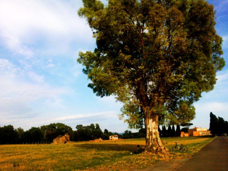 Take a break, enjoy the landscape!