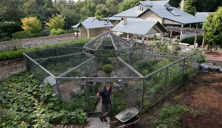 Chook shed and veggie patch. - This is pretty interesting. Chickens at one end, veggies in sections around. In the fall, after veggies are done, let the chooks in each section to clean up, eat weeds and bugs, etc. All winter they can roam the extra space. :-)