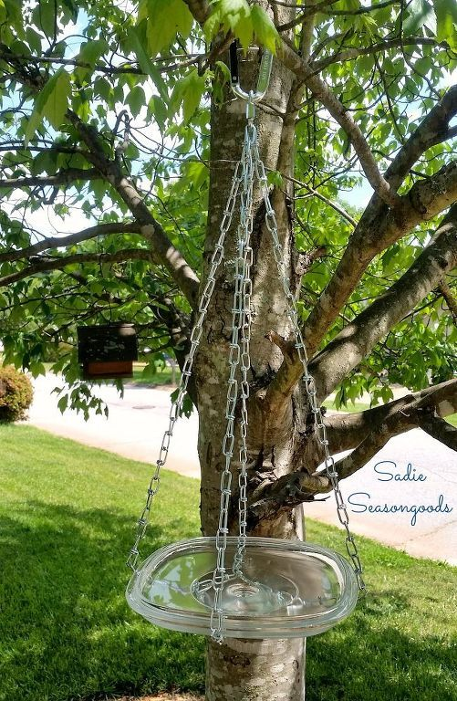 A glass casserole lid and a chain make the perfect eclectic bird bath.