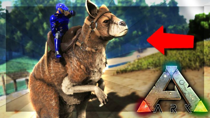 ARK: Survival Evolved Server - WE GOT A KANGAROO!! #43