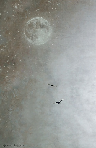 I will dream of places to go to and I will dream that you will come with me in the white moon light...