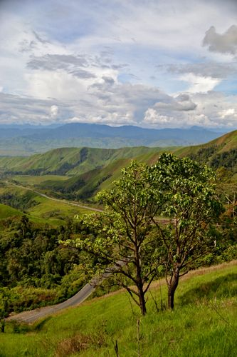 """""""There is a lovely road that runs from Ixopo into the hills. These hills are…"""