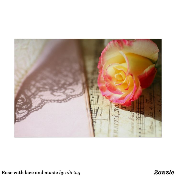 Rose with lace and music poster