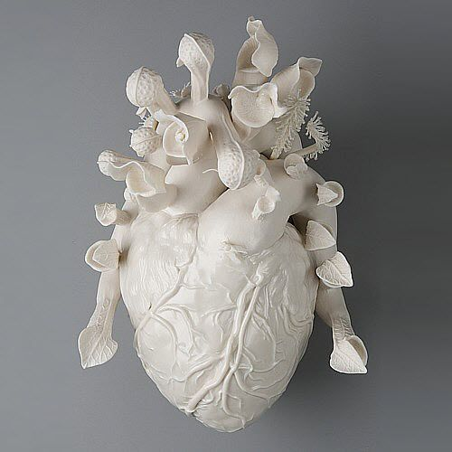 Lighting this porcelain sculpture is absolutely beautiful to me regardless of the plants and bees. It looks mysterious just like a real heart. The mysteries of our heart – physical and emotional. The heart represents the beginning of life, the love of life and the end of life. Such a magnificent organ