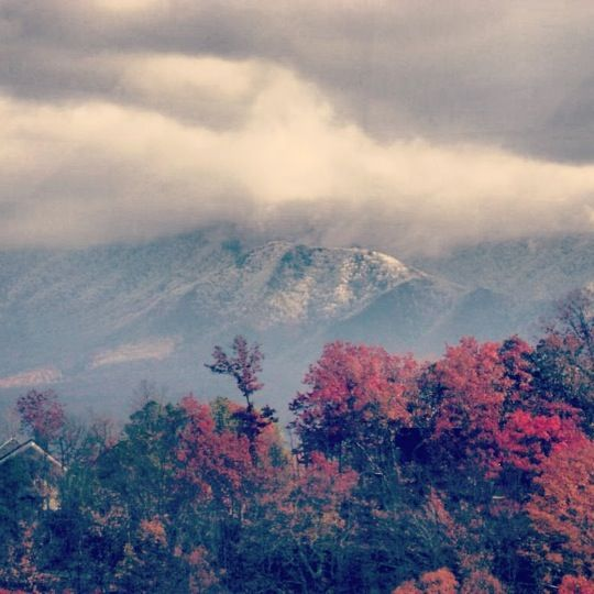 Great Smoky Mountains National Park in Gatlinburg, TN
