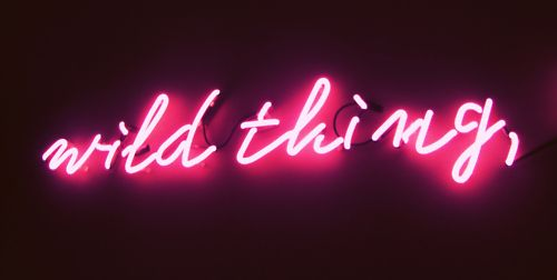 Wild thing! Neon sign. Get your own custom made neon sign on www.sygns.com