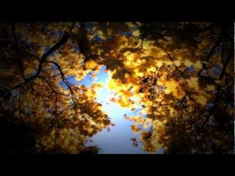 Video kezeléshez (HD) - YouTube