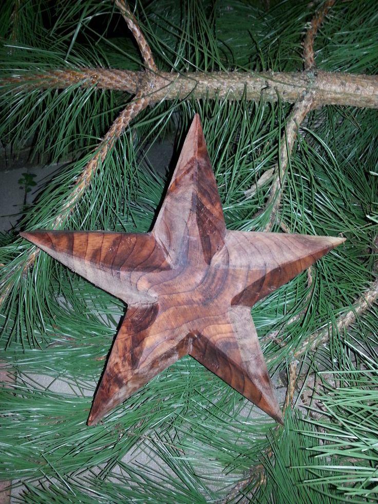 Stern Urweltmammutbaum
