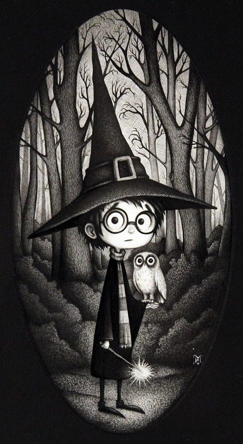 hermosa ilustración de harry potter