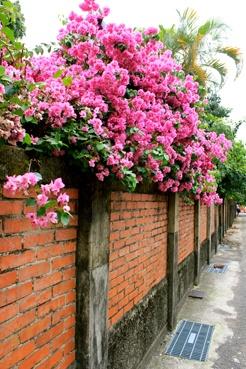 Wei. 2013. Tainan, Taiwan.
