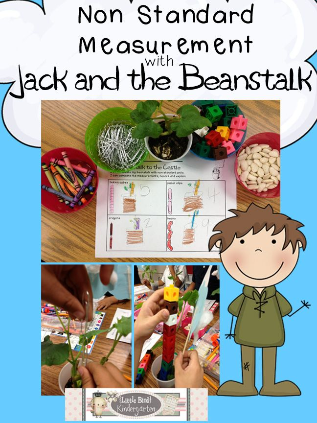 Little Bird Kindergarten Blog Post:  Non Standard Measurement with Beanstalks!