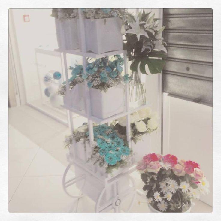 Carretto di fiori per Pandora Gioielli presso Orora Le Bretelle