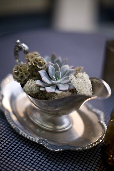 Find old gravy boats and bowls from your local thrift and fill them with succulents and moss. Instant centerpieces for your holiday dinner or just a touch of the outdoors on your coffee table.