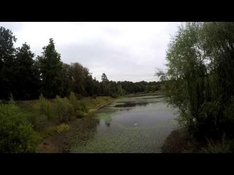 Осенние видео зарисовки в стиле time lapse, Москва, Гольяново - YouTube