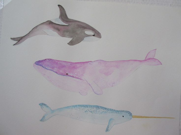 Watercolor whales <3 ^^