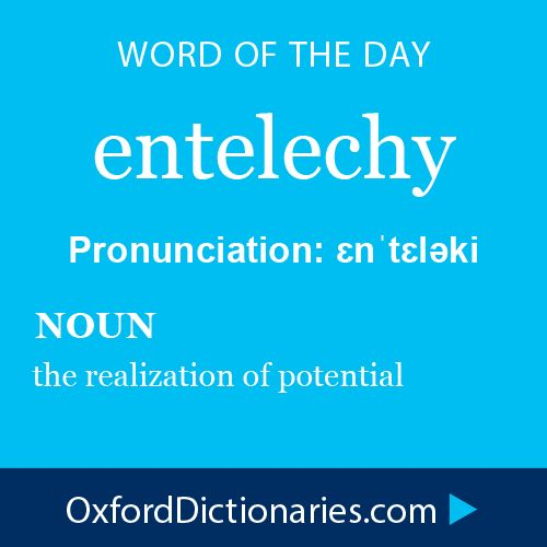 entelechy (noun): The realization of potential. Word of the Day for October 6th, 2014 #WOTD #WordoftheDay #entelechy