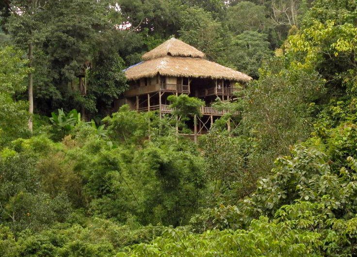 Schau Dir dieses großartige Inserat bei Airbnb an: Big Room @ The Tree House Hideaway  - Baumhäuser zur Miete in Chiang Mai
