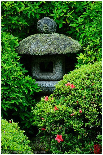 Stone lantern hidden in rhododendrons, Anraku-ji temple, by Damien Douxchamps