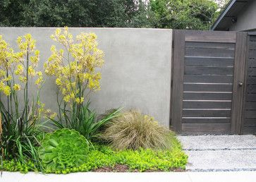 Kangaroo Paw Design Ideas, Pictures, Remodel, and Decor - page 4