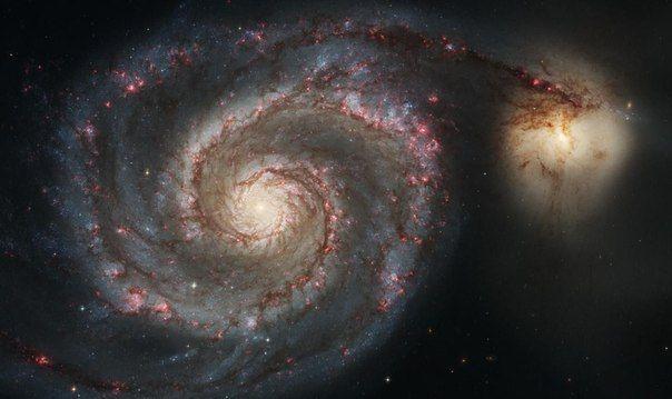 Спиральная галактика Водоворот и её компаньон NGC 5195 / IP Neo