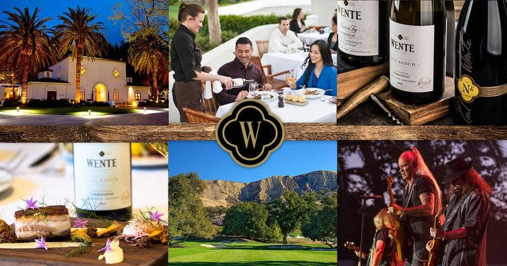 All Wente Vineyard Wines | Wente Vineyards  ||  Located just east of San Francisco in the historic Livermore Valley, Wente Vineyards is recognized as one of California's premier wine country destinations, featuring wine tasting, fine dining and championship golf. https://wentevineyards.com/wines/all