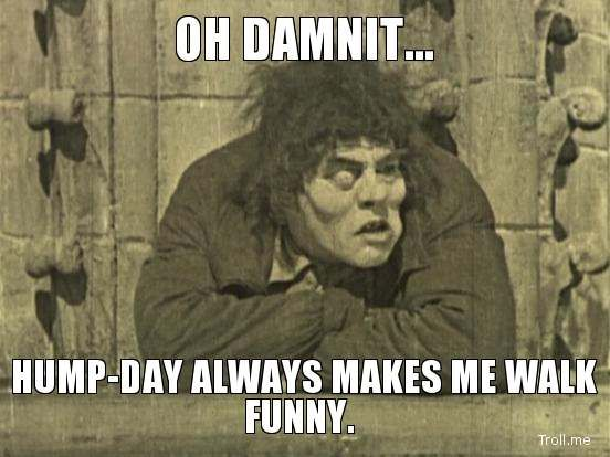 funny hump day pictures | Happy Hump Day Funnies « Motley News and Photos