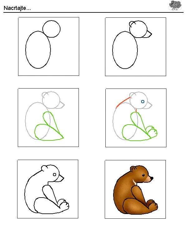 bear.jpg (600×750)