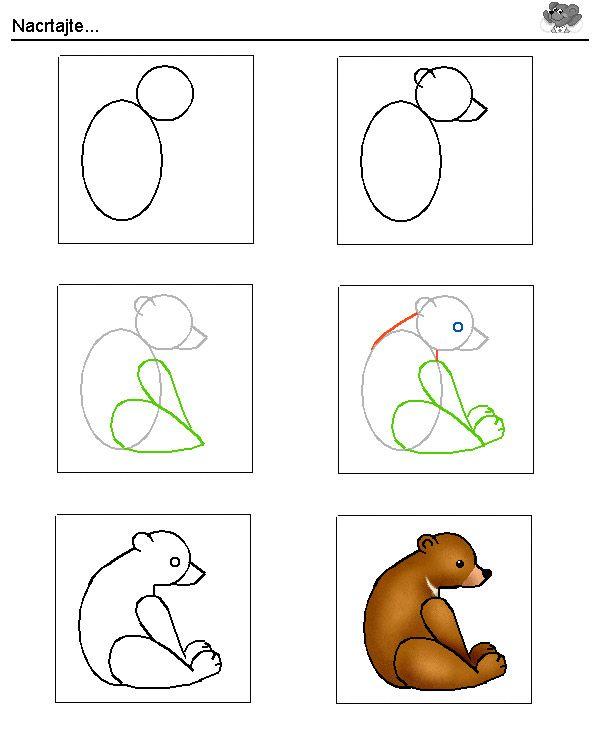 Hoe teken je een beer