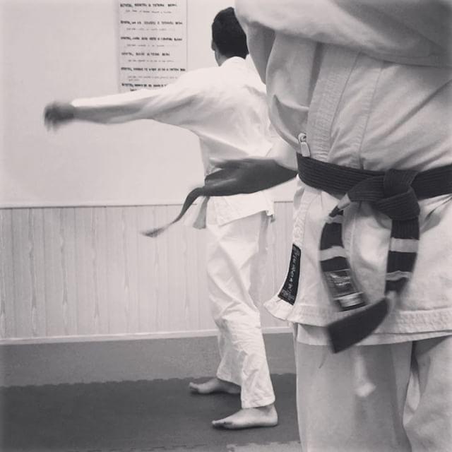 Dar cera pulir cera, pintar valla arriba abajo lado lado, #karate no en mente, no en puño...en el corazón. Si hay un arte marcial puro como el del #maestro #miyagui en #karatekid ese es el #kaisaido Pura meditación en movimiento, el auténtico arte de la pelea callejera okinawense el auténtico #budo 💮⛩