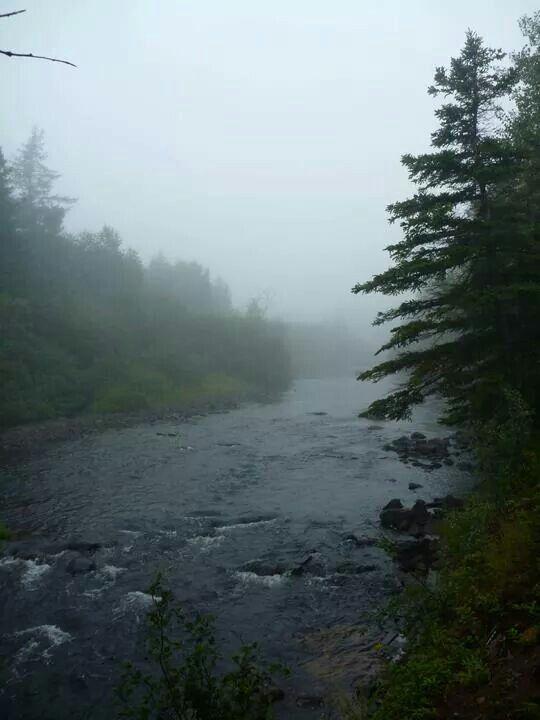 Salmonier River