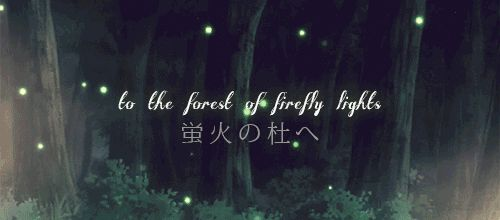 into the forest of fireflies' light - Buscar con Google