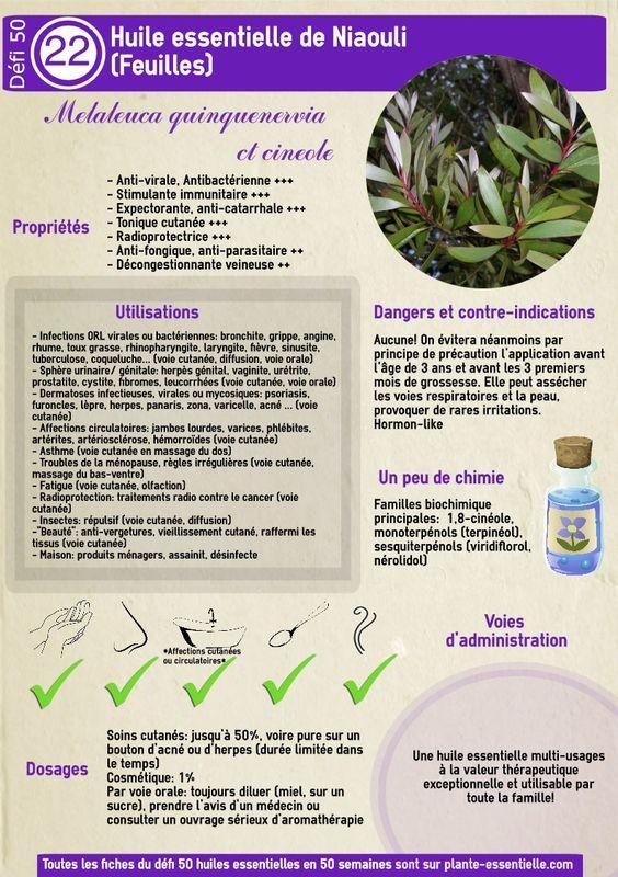 Recherches utilisées pour trouver cet article:huile essentielle de niaouli à 2 ans, melaleuca quinquenervia huile essentielle