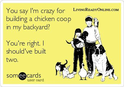 """""""You say I'm crazy for building a chicken coop in my backyard?  """"You're right. I should've built two.""""  www.livingreadyon..."""